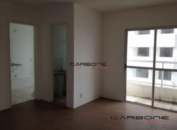 4911_icarbonei4911_17520.jpg