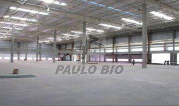 ipaulobio1269_1522115.jpg