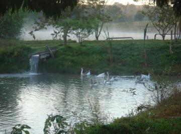 Rural de 7 quartos, Bela Vista de Goiás