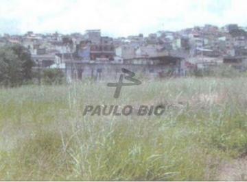 2179_ipaulobio2179_23826.jpg