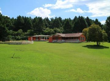 Rural de 4 quartos, Campina Grande do Sul