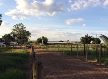Rural de 3 quartos, Aragoiânia