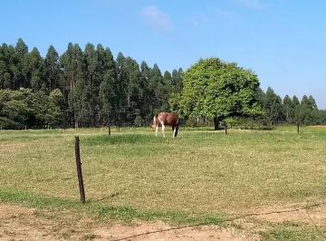 Rural de 3 quartos, Salto