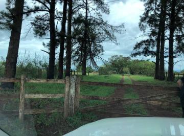 Rural de 8 quartos, Paranoá