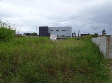 http://www.infocenterhost2.com.br/crm/fotosimovel/833939/162326436-terreno-pontal-do-parana-balneario-praia-de-leste.jpg