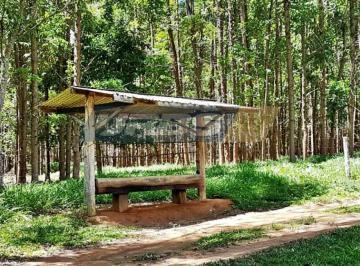 Rural de 0 quartos, Pirenópolis