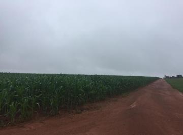 Rural de 1 quarto, Lucas do Rio Verde