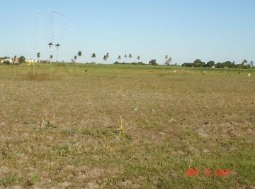 Rural , Campos dos Goytacazes