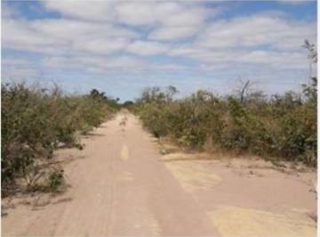 Rural de 0 quartos, Uruçuí