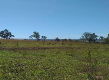 Rural de 3 quartos, São João D'Aliança