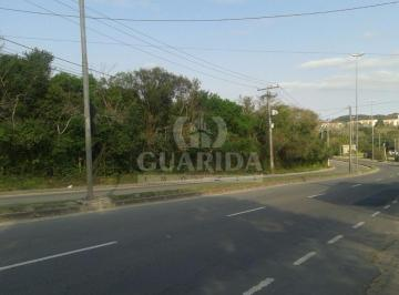 149463_558248595_Ipanema.jpg