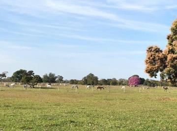 Rural de 0 quartos, Poconé