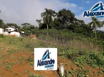 Terreno no bairro Ilha da Figueira em Jaraguá do S