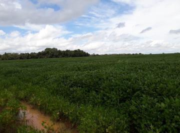Rural de 5 quartos, Jaraguá
