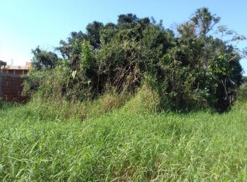 http://www.infocenterhost2.com.br/crm/fotosimovel/850684/169108424-terreno-pontal-do-parana-balneario-grajau.jpg