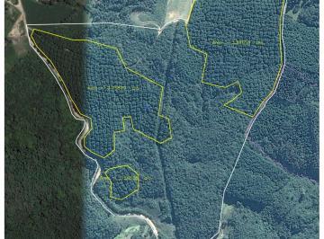 http://www.infocenterhost2.com.br/crm/fotosimovel/790381/144170369-sitio-tijucas-do-sul-tijucas-do-sul.jpg