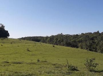 Rural de 0 quartos, Itajaí