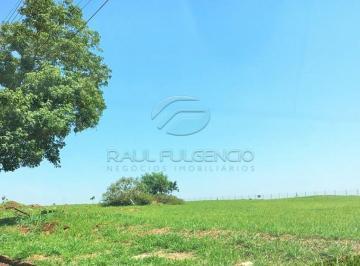 londrina-terreno-residencial-monte-carlo-01-11-2019_08-16-35-0.jpg