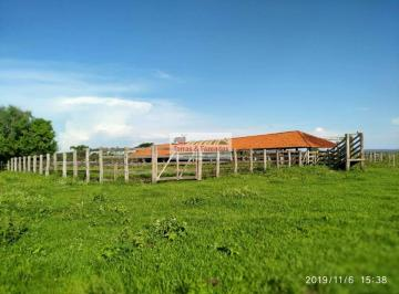 Rural de 0 quartos, Cassilândia