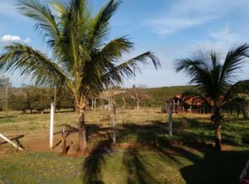 ipigua-rural-sitio-centro-11-10-2019_08-47-52-0.jpg