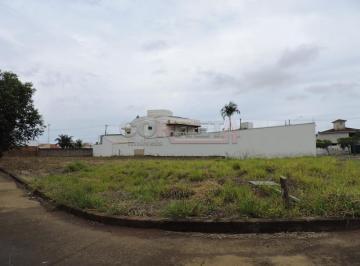 aracatuba-terreno-padrao-vila-alba-18-09-2018_16-43-54-0.jpg