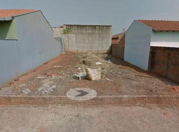 mirassol-terreno-padrao-regissol-14-12-2018_17-49-40-0.jpg