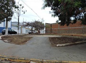 aracatuba-terreno-padrao-vila-alba-18-09-2018_16-40-37-1.jpg