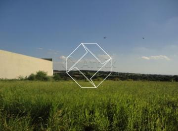 nova-odessa-terreno-area-jardim-industrial-dante-siani-10-05-2019_16-44-00-0.jpg