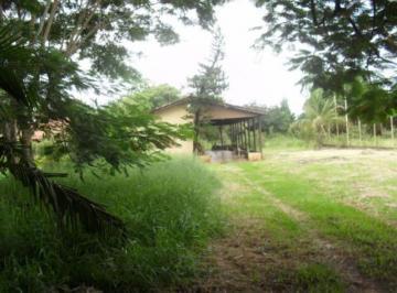 sao-jose-do-rio-preto-rural-chacara-chacara-recreio-terras-de-sao-jose-zona-rural-14-10-2019_16-26-43-0.jpg
