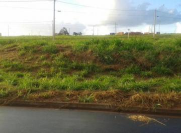 sao-jose-do-rio-preto-terreno-area-jardim-nunes-08-10-2019_16-57-18-1.jpg