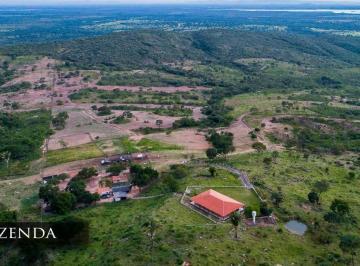Rural de 4 quartos, São João D'Aliança