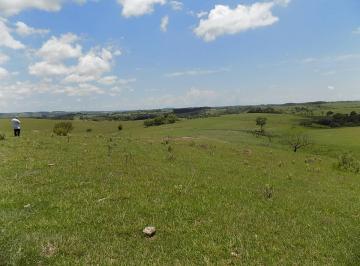 Rural de 0 quartos, Porangaba