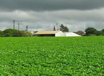 Rural en Venda de 7 quartos Zona Rural