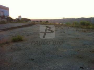 ipaulobio1357_917491.jpg
