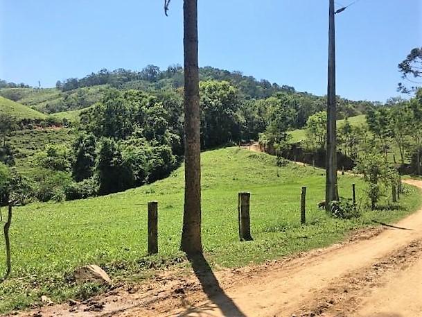 Fazenda em Castro   317,00    Alqueires (767,14    Hectares)   Pecuária