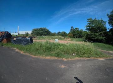 guapiacu-terreno-padrao-residencial-antonieta-ii-08-10-2019_19-17-15-11.jpg