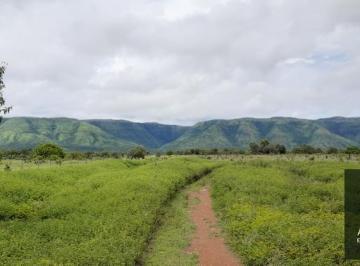 Rural de 0 quartos, Flores de Goiás