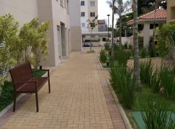 Apartamento Aluguel Cambuci