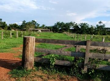 Rural de 3 quartos, Juara