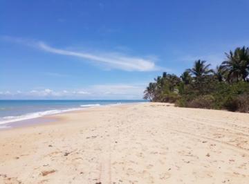 terreno-maravilhoso-na-praia-30000m2-WEN0002-1584642756-1.jpg