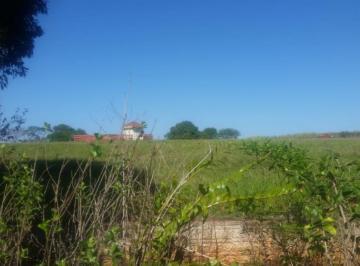 maringa-terreno-padrao-area-rural-de-maringa-04-11-2019_14-31-58-0.jpg