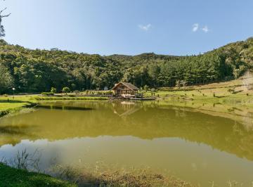 http://www.infocenterhost2.com.br/crm/fotosimovel/1032434/272127037-chacara-sao-jose-dos-pinhais-colonia-malhada.jpg
