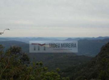 Terreno · 38000m²
