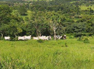 Rural de 2 quartos, Pirenópolis