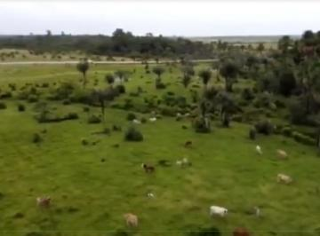 Rural de 1 quarto, Amapá