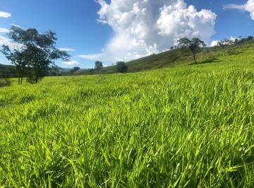 Rural , Padre Bernardo