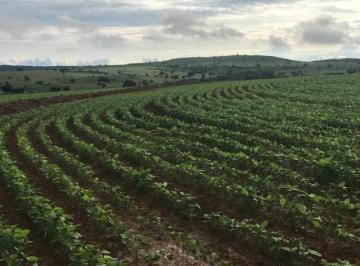 Rural de 3 quartos, Flores de Goiás