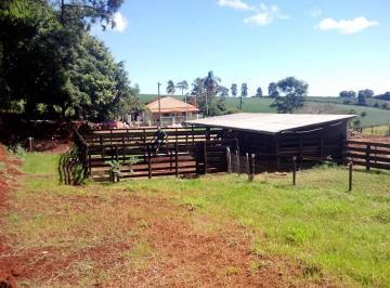 Rural de 0 quartos, Londrina
