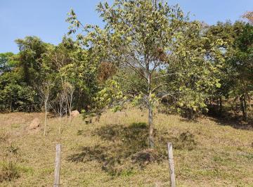 Terreno , São Pedro