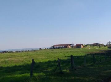 Rural de 0 quartos, Ponta Grossa